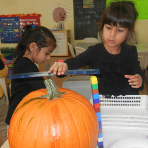 A child uses a ruler to measure a pumpkin.